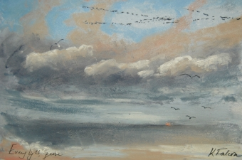 Evening light, geese